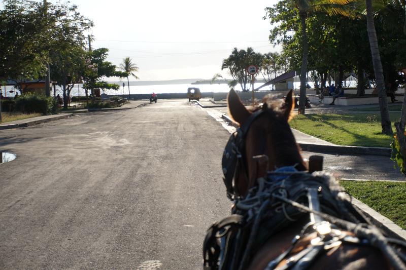 BeMyMajorAdventure_Blog_Voyage_Cuba_Cienfuegos_Balade_Caleche