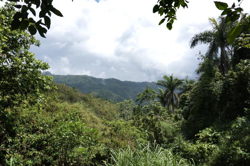 BeMyMajorAdventure_Blog_Voyage_Cuba_Cienfuegos_El_Nicho_Cascades6